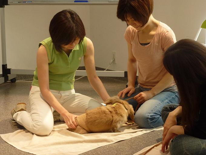 Tタッチを学ぶ人が日本でも少しずつ増え始めています(w680)