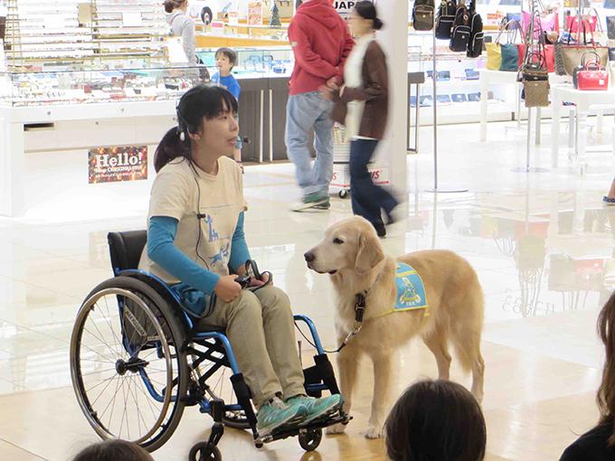 介助犬PR犬のアポロと一緒に(w680)