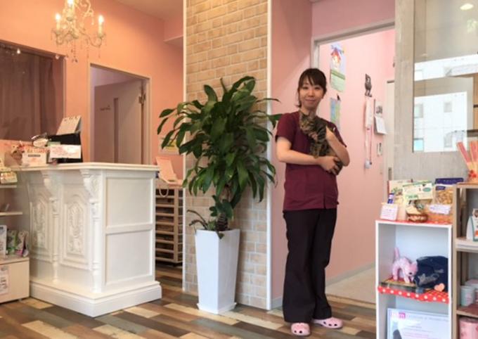猫をこよなく愛する谷口先生と、その思いがたくさん詰まった猫のためのスペース