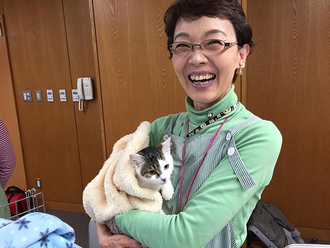 猫 ねこ 譲渡会 NPO法人フライングタイガース シェルター