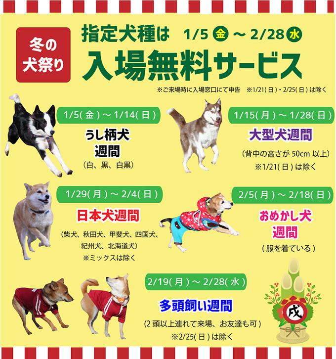 指定犬種 入場無料 成田ゆめ牧場