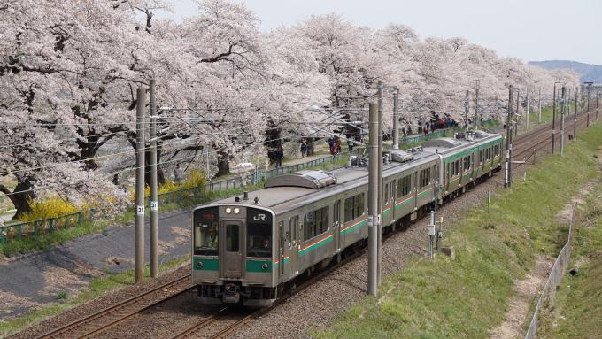 701系 E721系 電車 快速 仙台シティラビット 東北本線 船岡 大河原