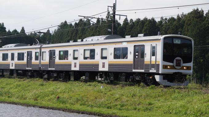 205系 電車 快速 GOGOいろは日光 日光線 日光 今市