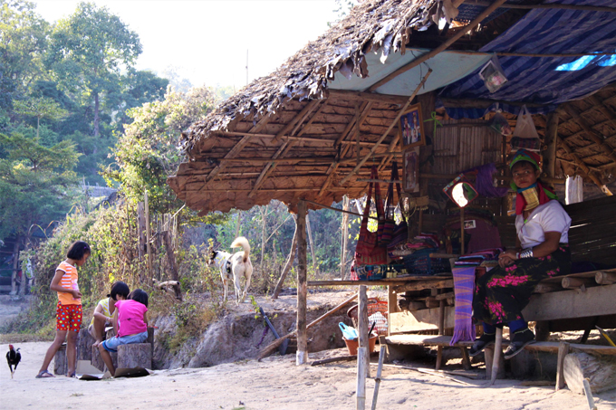 タイ 少数民族 犬 愛犬 いぬ イヌ アジア