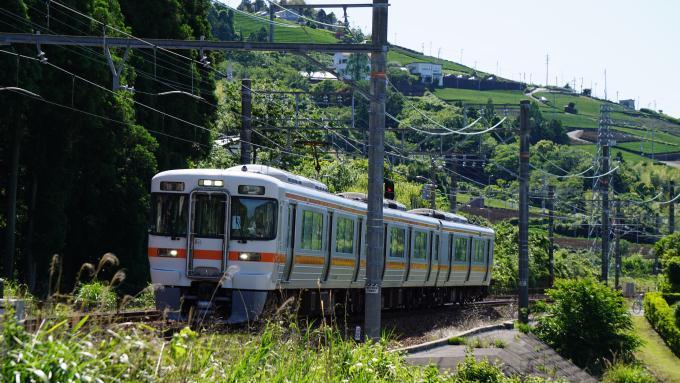 313系電車 普通列車興津行 東海道本線 金谷~島田間 313系