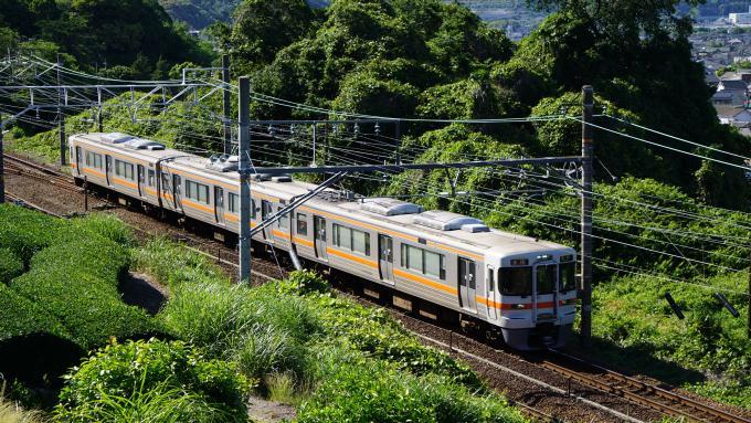 313系電車 普通列車静岡行 東海道本線 金谷~島田間 313系