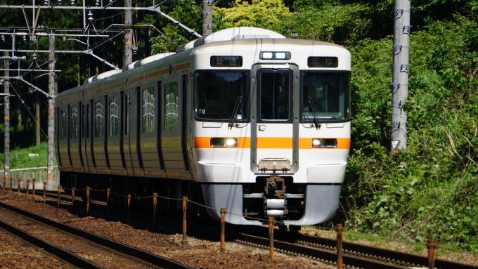 313系電車 東海道本線 島田~金谷間 313系