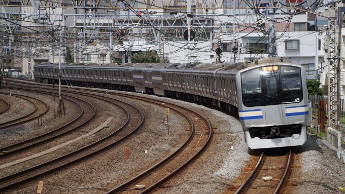 E217系 普通列車 東海道本線 戸塚~大船間 崎陽軒 えび エビ シュウマイ シウマイ