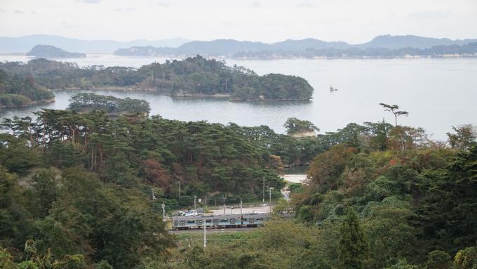 205系電車 仙石線 陸前浜田 松島海岸 弁当 駅弁 こばやし 株式会社こばやし