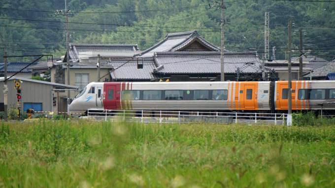 8000系 電車 特急 しおかぜ いしづち 予讃線 多度津 海岸寺 弁当 駅弁