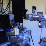 分析装置にサンプルを置き、180度回転させる(写真中央)(オンライン画面から)