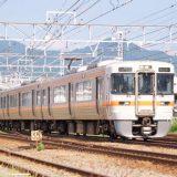 313系+211系電車・普通列車、東海道本線・富士川~富士間