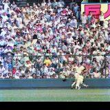 プロ野球 巨人対中日 8回表1死 中日の中尾の放った左中間の飛球を捕球する際に、左翼手の巨人・吉村禎章(左)に中堅手の栄村忠広が激突した。この後、巨人・吉村禎章は試合を退場し救急車で病院に運ばれた。=1988年7月6日、札幌市・円山球場 写真提供:産経新聞社