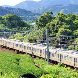 313系+211系電車・普通列車、東海道本線・金谷~島田間