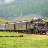 C11形蒸気機関車+旧型客車・急行「かわね路」、大井川鐵道大井川本線・抜里~家山間