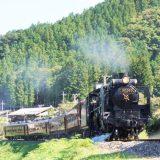 C58形蒸気機関車+12系客車「SLパレオエクスプレス」、秩父鉄道・白久~三峰口間