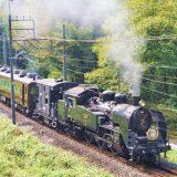 C11形蒸気機関車+14系客車「SL大樹」、東武鬼怒川線・新高徳~小佐越間