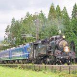 C11形蒸気機関車+14系客車「SL大樹」、東武鬼怒川線・大桑~大谷向間